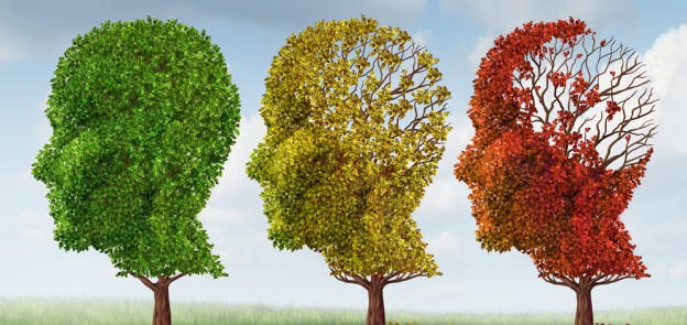 Alzheimer's Disease – Reduce Your Risk!