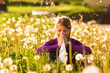 Avoid Seasonal Allergies With Natural Cures